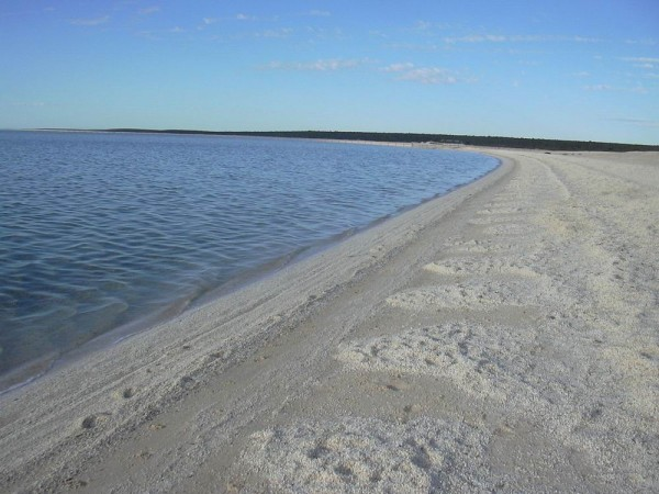 Shell Beach, Shark Bay, Australia